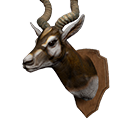 icon_trophy_antilope.png Symbol