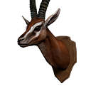 icon_trophy_gazelle.png Symbol